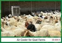 Commercial Air Cooler For Goat Farms Area