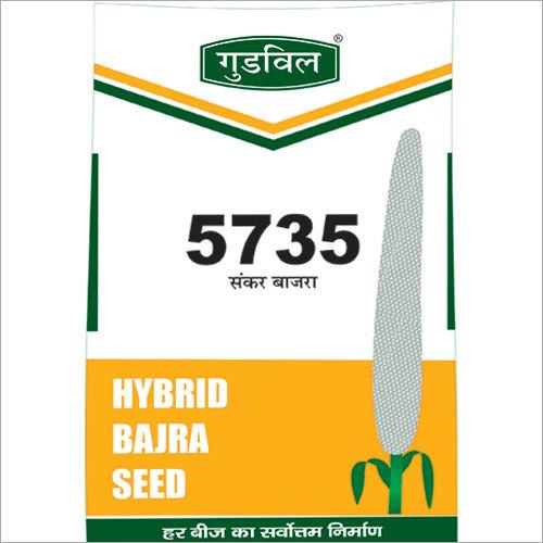 5735 Hybrid Bajra Seed