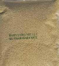 Banyard Millet