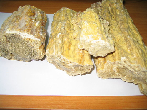 Quality Damar Batu