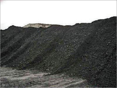 Quality Steam Coal
