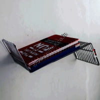 Stainless Steel Designer Book Shelf