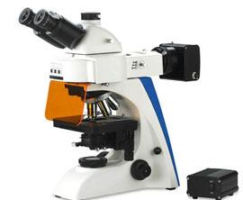 Fluorescence Microscope