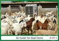 Evaporative air coolers For Goat Farms Area