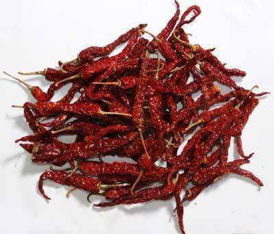 Red Chilli - BYADGI