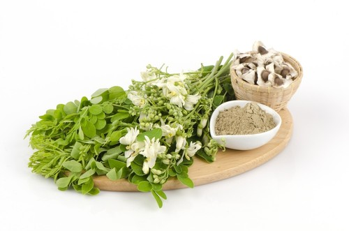 MORINGA SEEDS POWDER