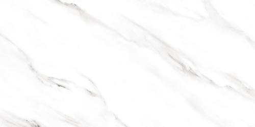 Carrara Porcelain Floor Tile