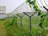 Wire Mesh Blade Security Fencing