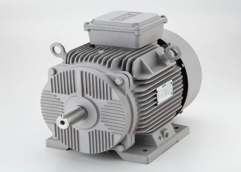 ITI AC Squirrel Cage Motor 3 Phase