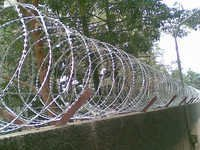 Reinforced Blade Razor Wire