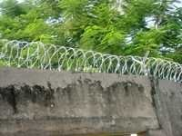 Barbed Wire With Razor Blade
