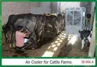 Air Coolers For Cattle Farms