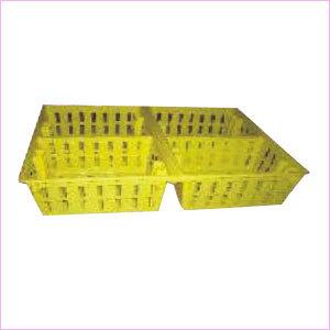 Chick Transport Box
