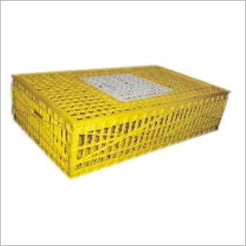 Chick Transport Plastic Box