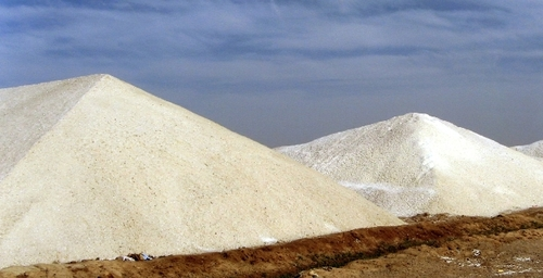 Ecology Of A Salt Works