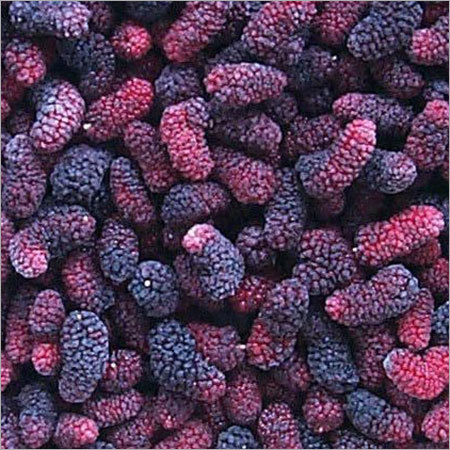 Frozen Indian Mulberries