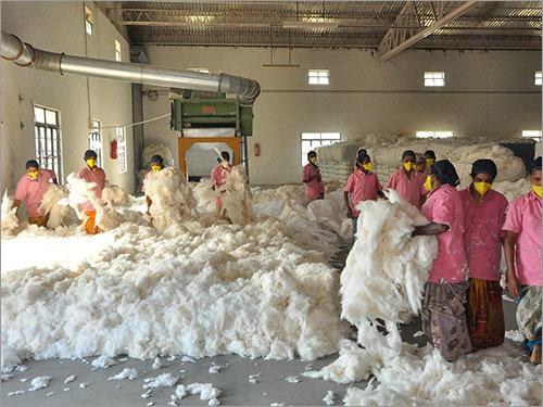 Polyester Cotton Blended Febric