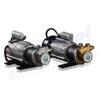 Mag Drive pump and DC Motor