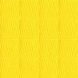 Acid Yellow Dye
