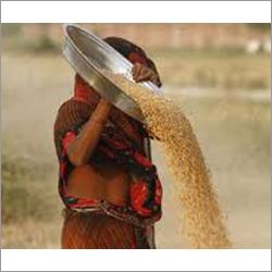 Raw Wheat Flour