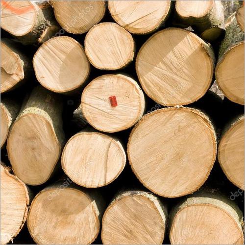 SPF Logs