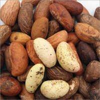 Bitter Kola Seeds