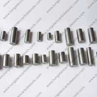 Carbide Rod with Hole