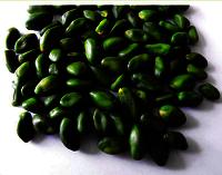 Pistachio Green Kernels