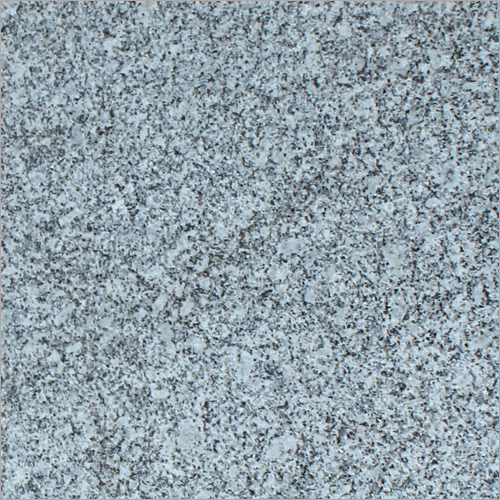 Koliwada White Granite Slab