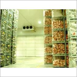 Potato Cold Storage Room
