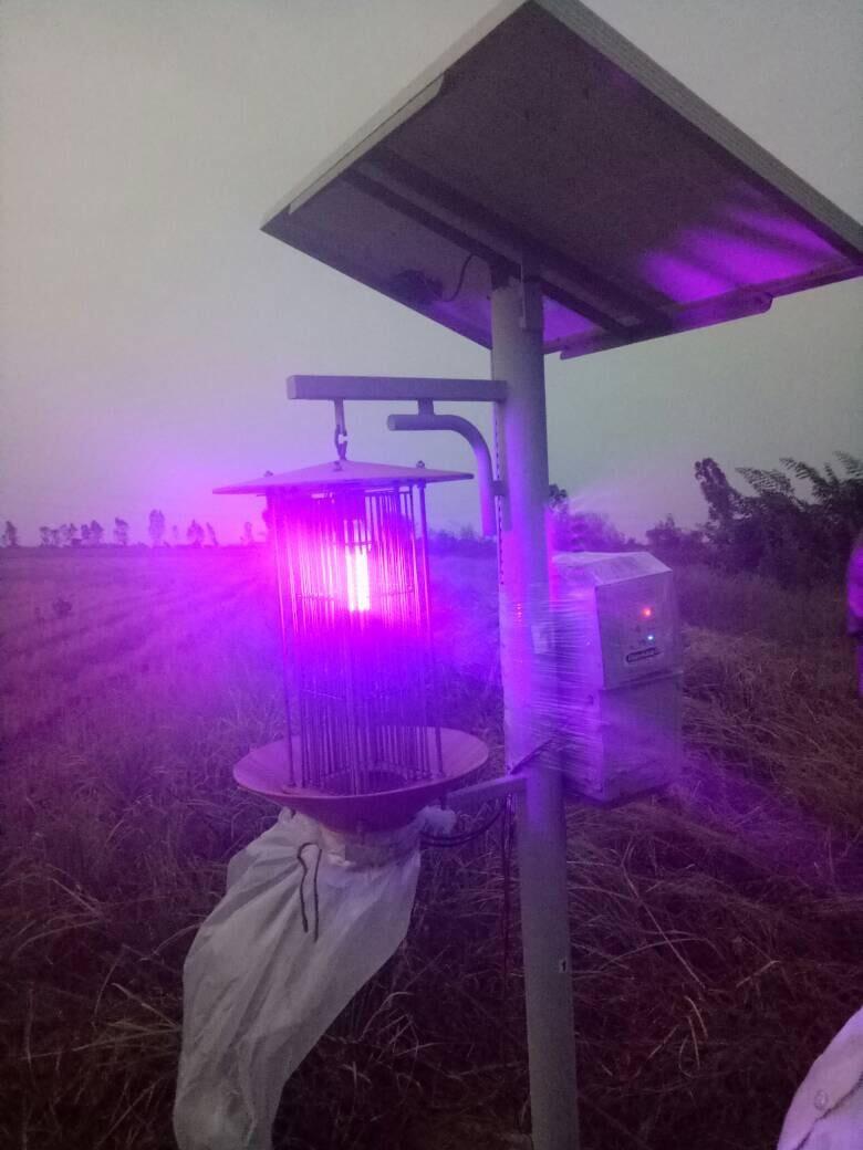 Solar Pest Killer