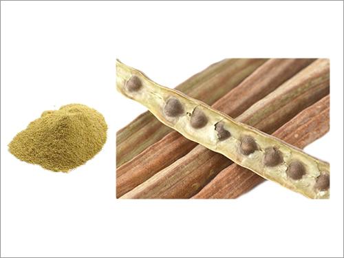 Moringa Fruit Powder