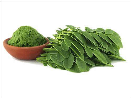 Leaf Powder