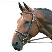 Horse Leather Bridle