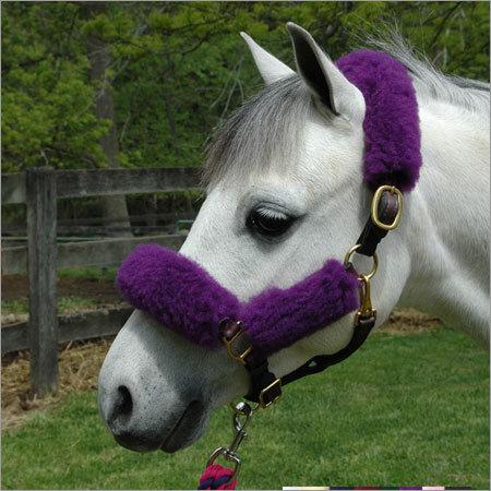 Horse Furr Halter