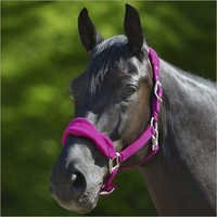Horse Fleece Padded Halter