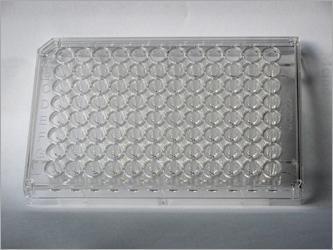 Immunolab Microplate 96 Wells