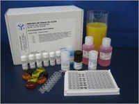 Immunolab Vitamin-B12 Testing Kit