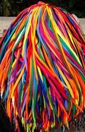 Colored Shoe Laces