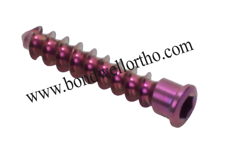 Orthopaedic Implants 4.0mm Bone Screw Tit for Ce