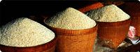 Non Basmati Broken Rice