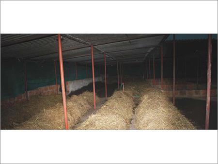 Agriculture Biofertilizers