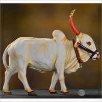 Bull 1 ft