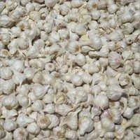 Dried Garlic Flake