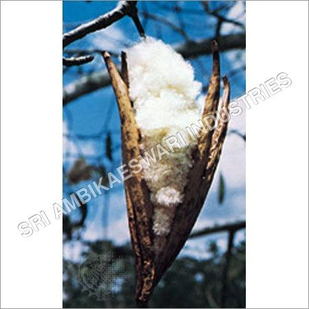 Pure Kapok Cotton