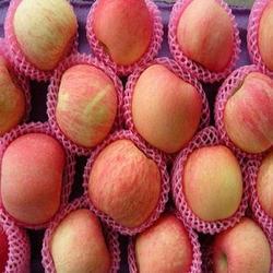Fruit Packaging Foam Net