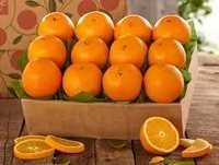 Fresh Oranges Avogados, Apples, Bananas, Lemons, Mandarin, Pineapples