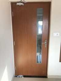 Wood Finish Doors