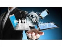 Information Technology Consultant