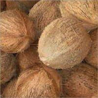 De Husked Coconut